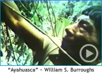 Ayahuasca narrated by William S. Burroughs